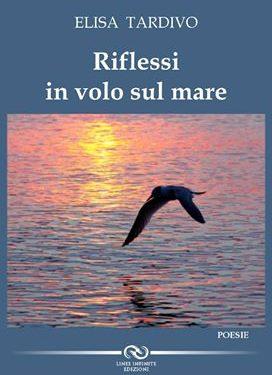 Recensione libro Riflessi in volo sul mare a cura di Elisabetta Bellino autrice Elisa Tardivo